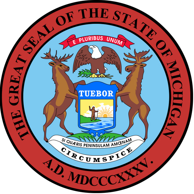 Image result for michigan state flag