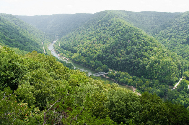 West Virginia My Home Sweet Home State Symbols Usa