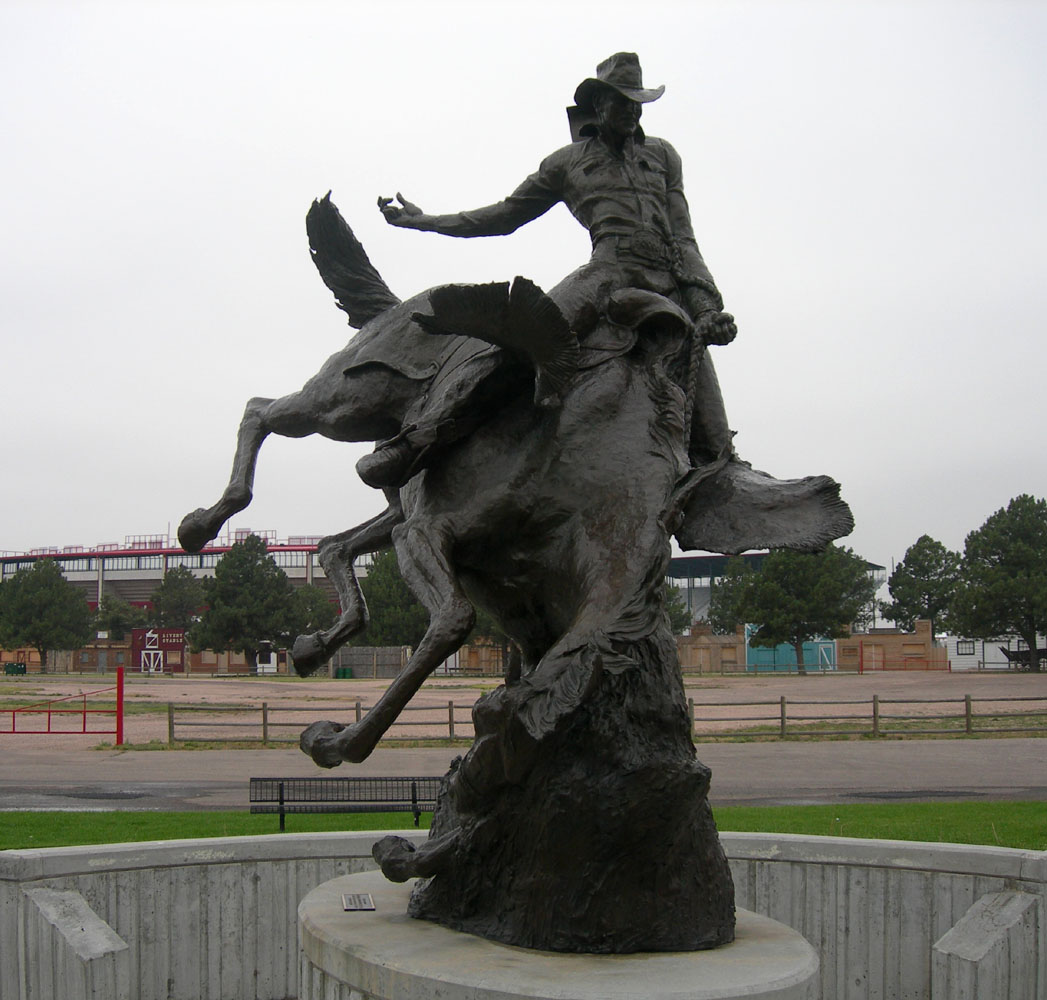 Wyoming State Sport Rodeo