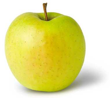 West Virginia State Fruit Golden Delicious Apple