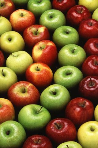 Image of a variety of apples, the official fruit of Washington State