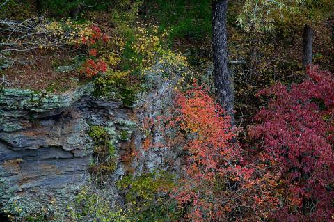 Autumn in the Ozarks