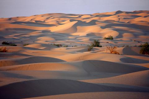 Imperial Sand Dunes in California