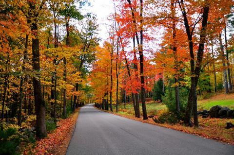 Fall foliage in Dover, New Hampshire