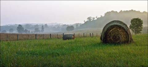 Rural Kentucky - farmland with bales of hay in morning mist