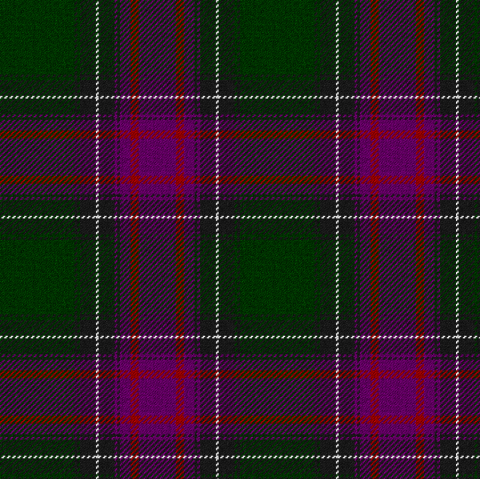 Photo of New Hampshire offical state tartan by Celtus