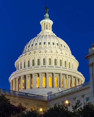 U.S. Capitol building dome
