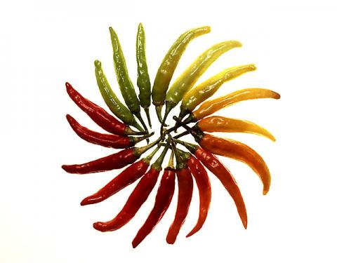 Photo of red an green chile peppers