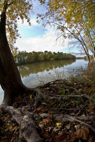 Banks of the Wabash river