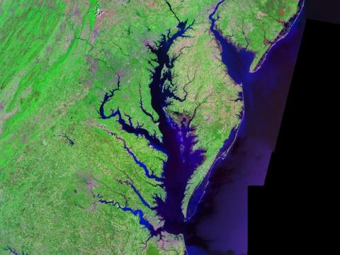 The Chesapeake Bay
