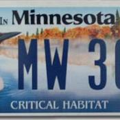 Minnesota license plate features common loon