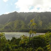 View from the trail at Ahupuaʻa O Kahana State Park, Hawaii