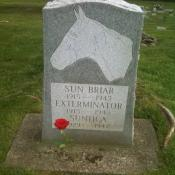 Headstone for Exterminator in Binghamton NY