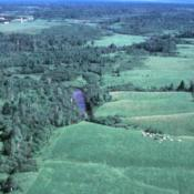 Kalkaska soil landscape in Michigan