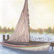 Illustration of Shad boat