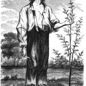 1862 drawing of Johnny Appleseed