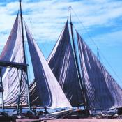 Skipjacks drying their sails in Chesapeake Bay, Maryland