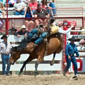 Cowboy on bucking bronco at Cheyenne Frontier Days in Wyoming.