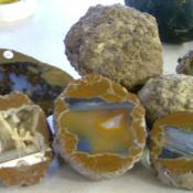 Thunderegg polished halves
