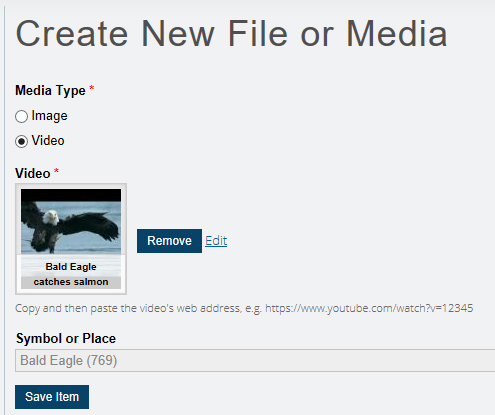 New video file appears on Create New File page