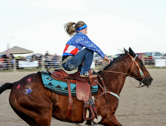 Houston rodeo generated $227 million for local economy ...  |Texas State Sport Rodeo