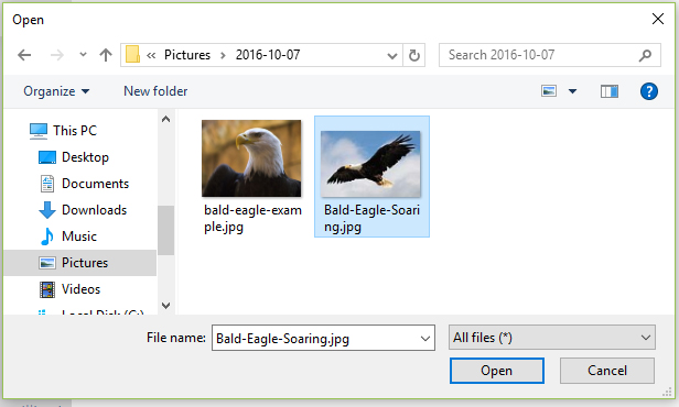 Select image file and click Open button