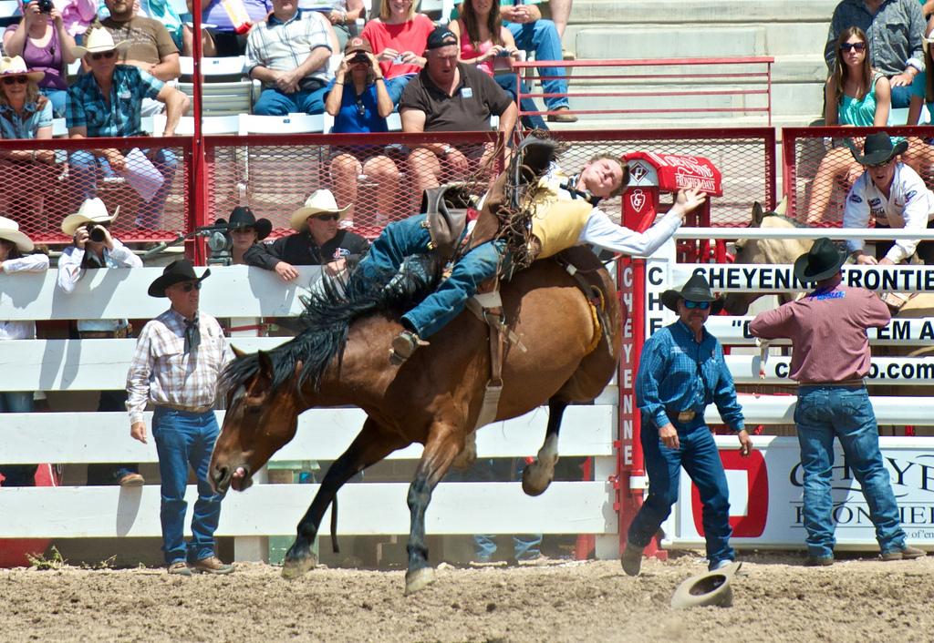 Texas State Sport | Rodeo  |Texas State Sport Rodeo
