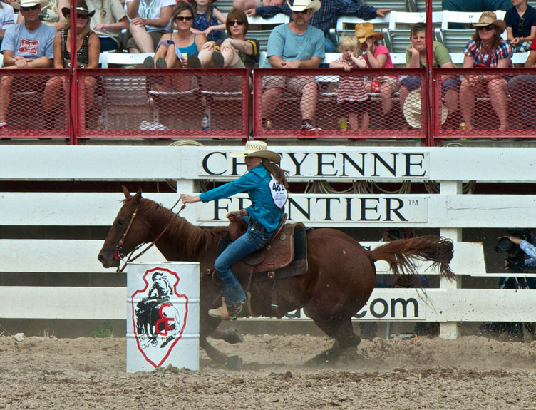 State Sport  |Texas State Sport Rodeo
